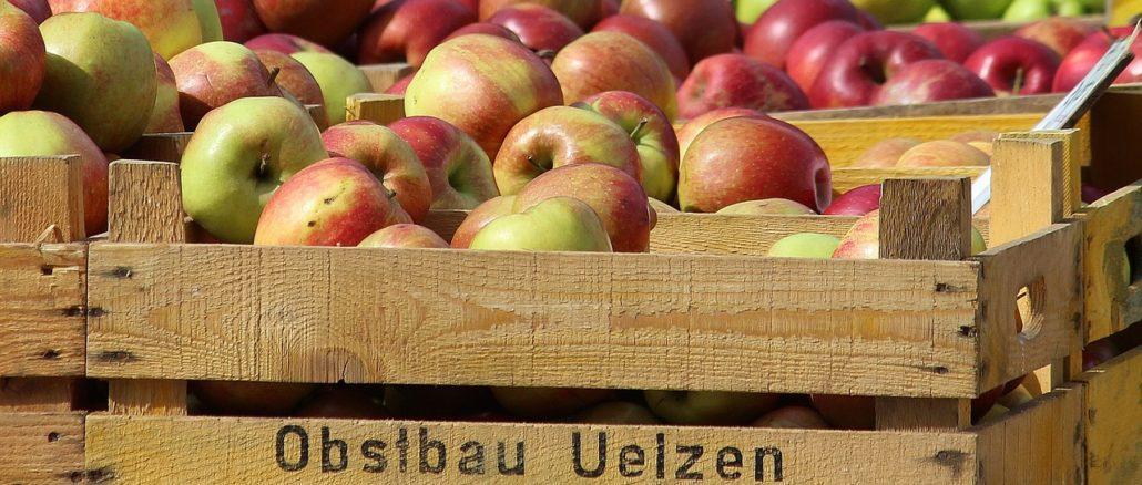 Wochenmarkt in Scharbeutz